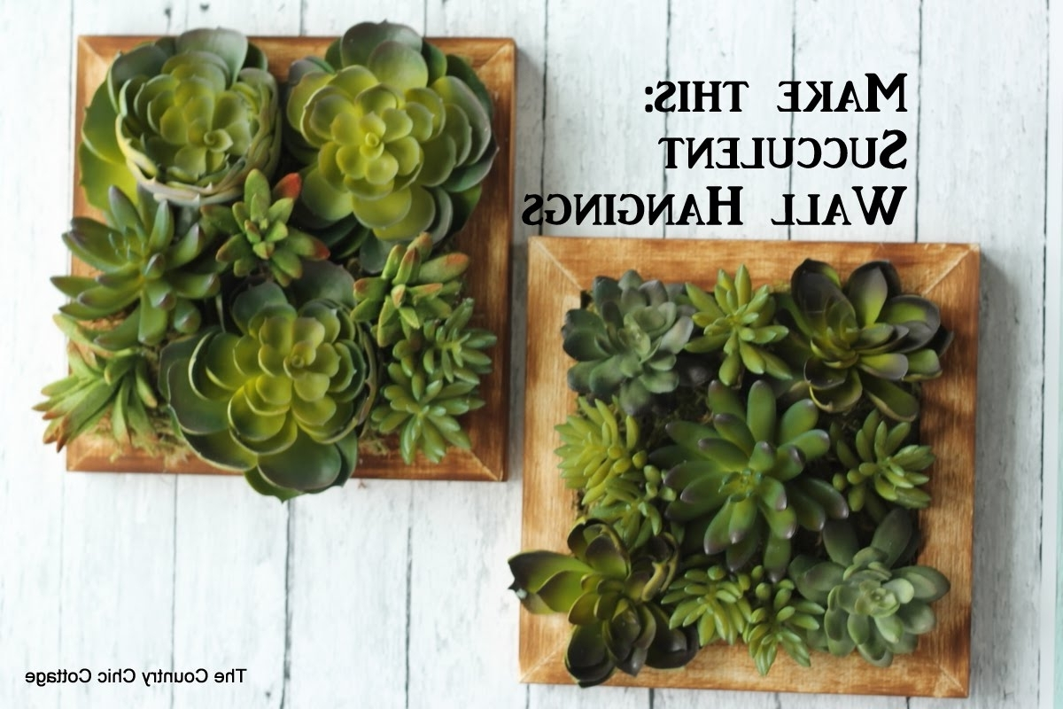 Succulent Wall Art Throughout 2018 Faux Succulent Wall Hanging #craftsunder10Hoa – Youtube (View 4 of 20)