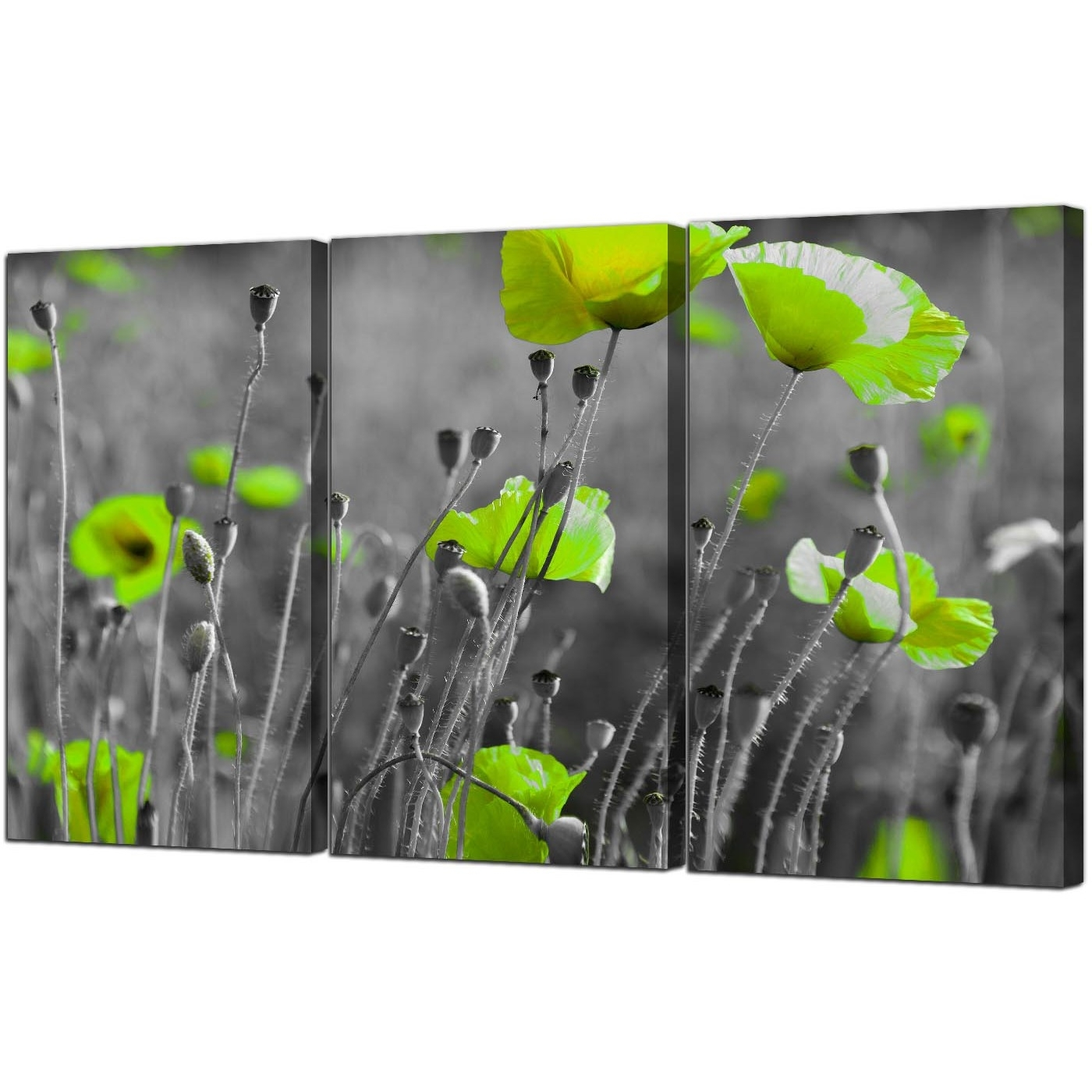 Trendy Green Poppy Canvas Wall Art 3 Part For Your Living Room Within Green Wall Art (Gallery 8 of 20)