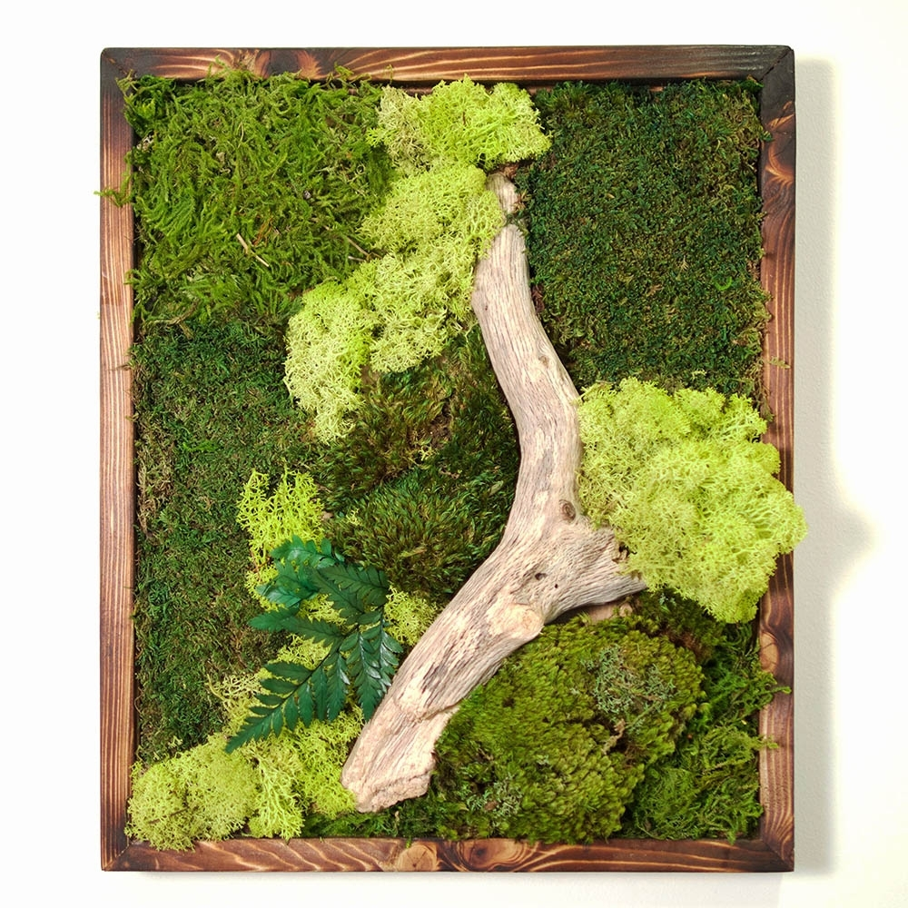 Trendy Moss Wall Art With Regard To 18X18 Moss Wall Art – Dark Frame – Real Bodywork (Gallery 4 of 20)