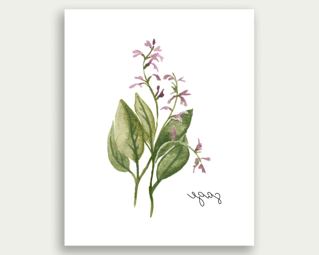 Watercolor Landcolor Skycolor — Herb Wall Art, Herb Print, Sage Wall Inside Best And Newest Herb Wall Art (View 19 of 20)