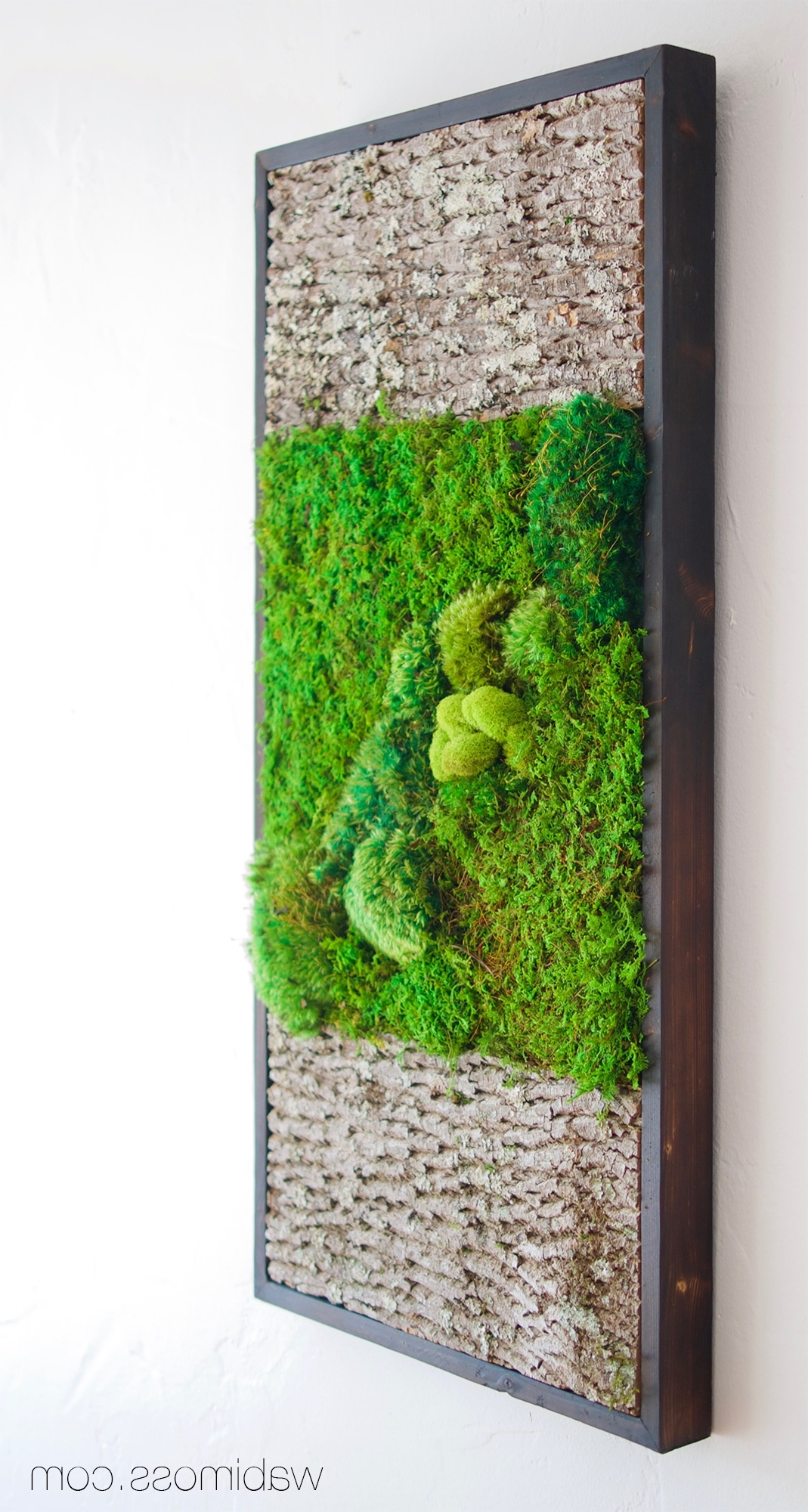 Well Known Bark And Moss Wall Art 36x18 – Wabimoss Intended For Moss Wall Art (View 13 of 20)