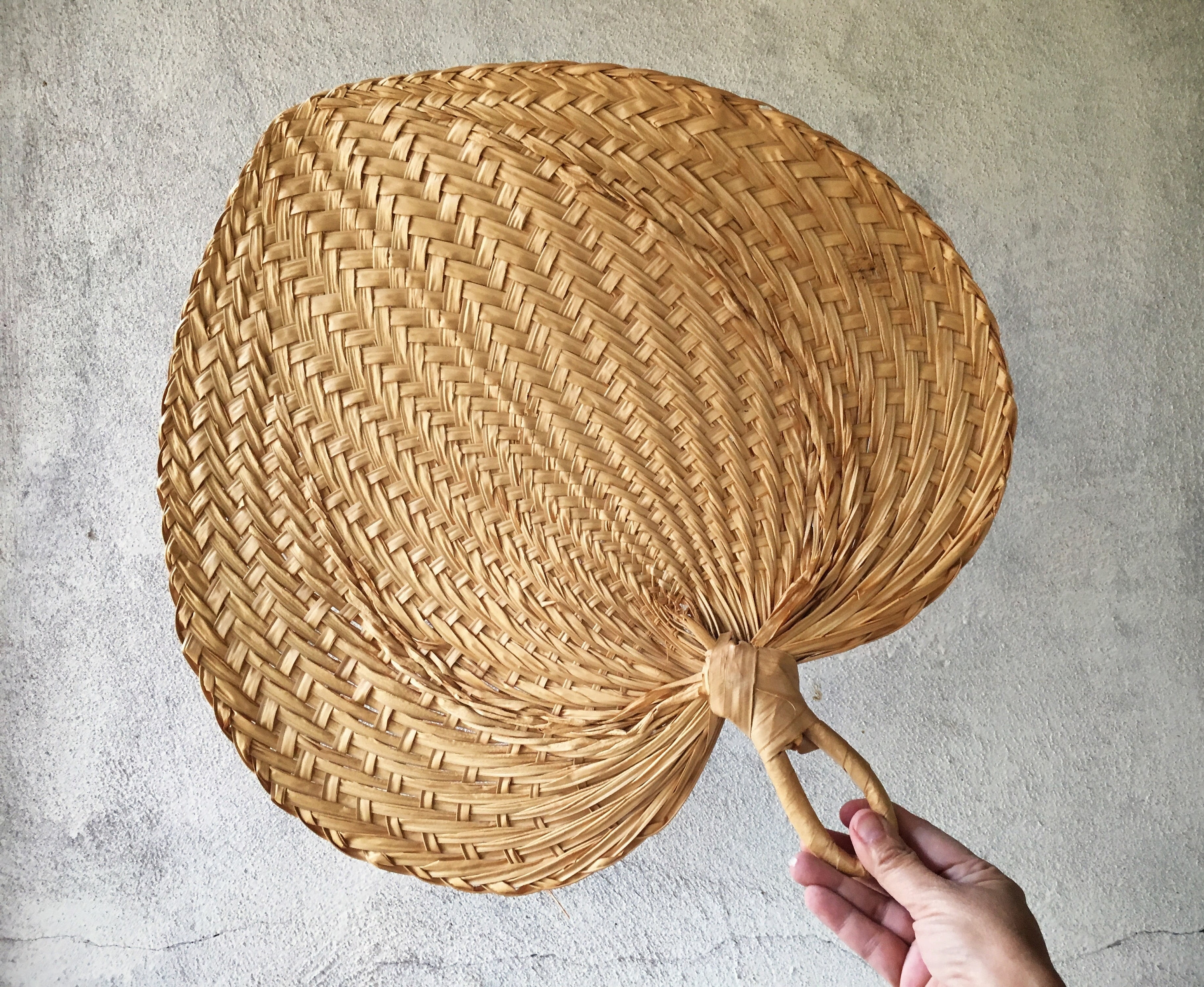 Woven Basket Wall Art Within Most Popular Vintage Woven Straw Fan Wall Hanging Jungalow Decor Wicker Wall Art (View 12 of 20)