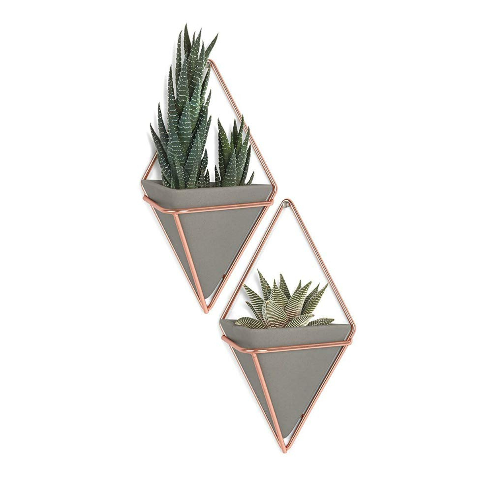 2 Piece Trigg Wall Decor Sets (Set Of 2) With Regard To Newest Amazon: Umbra Trigg Hanging Planter Vase & Geometric Wall Decor (View 2 of 20)