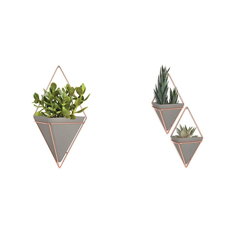 Best And Newest Amazon: Umbra Trigg Hanging Planter Vase & Geometric Wall Decor Within 2 Piece Trigg Wall Decor Sets (Set Of 2) (View 10 of 20)