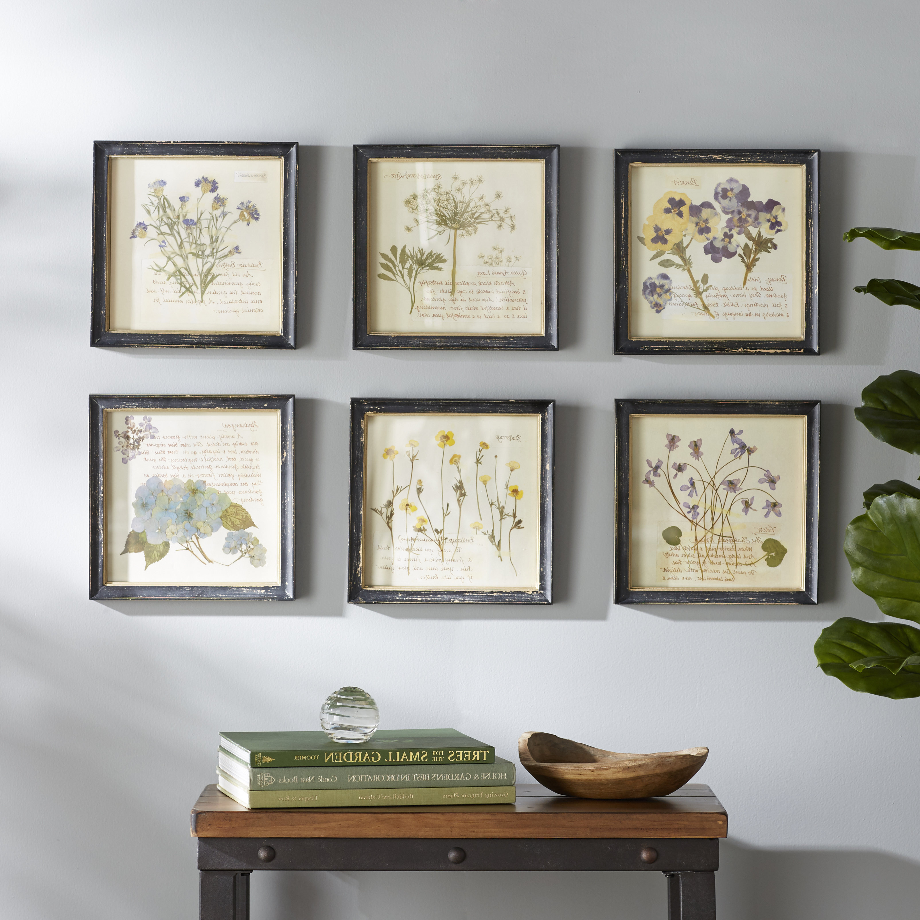 Current 2 Piece Heart Shaped Fan Wall Decor Sets Regarding Birch Lane™ Heritage 'pressed Flowers' 6 Piece Framed Graphic Art (Gallery 18 of 20)