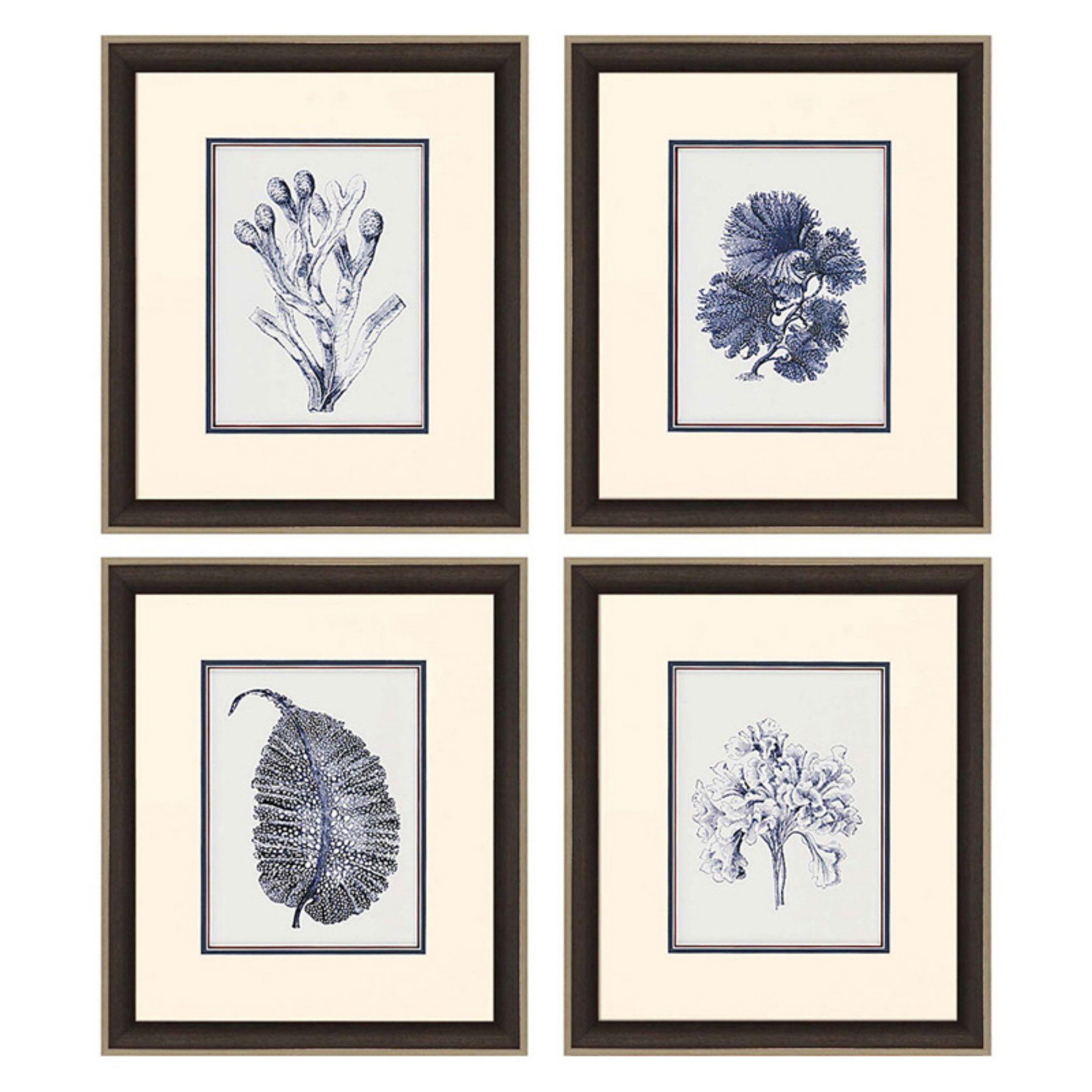Famous 4 Piece Metal Wall Decor Sets Inside Paragon Decor Indigo Kelp Framed Wall Art – Set Of 4 –  (View 6 of 20)