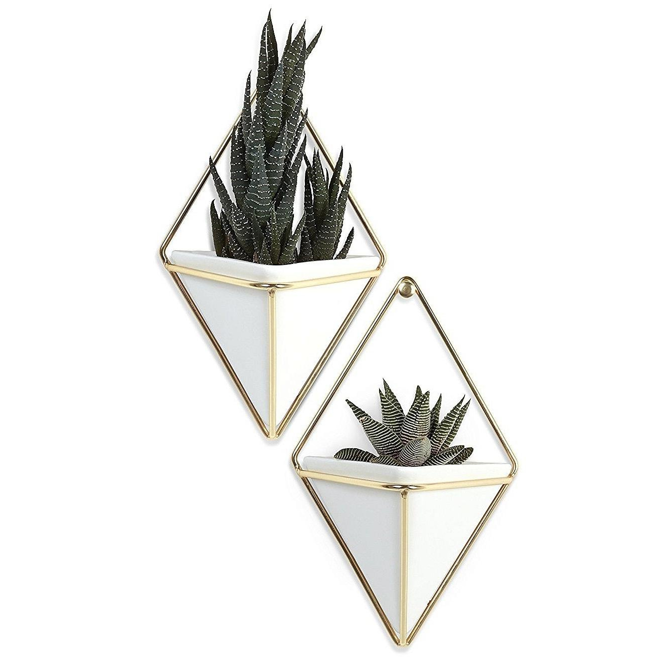 Most Popular Trigg Ceramic Planter Wall Decor Within Umbra Trigg Hanging Planter Vase & Geometric Wall Decor Container (View 9 of 20)