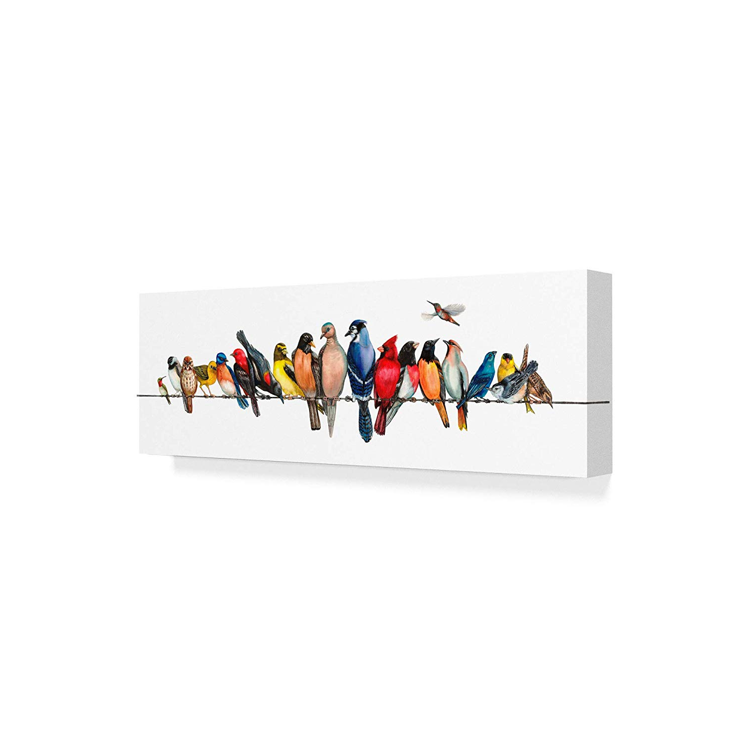 Most Popular Wall Decor By World Menagerie With Trademark Fine Art Large Bird Menagerie Ii Wall Decorwendy (View 6 of 20)