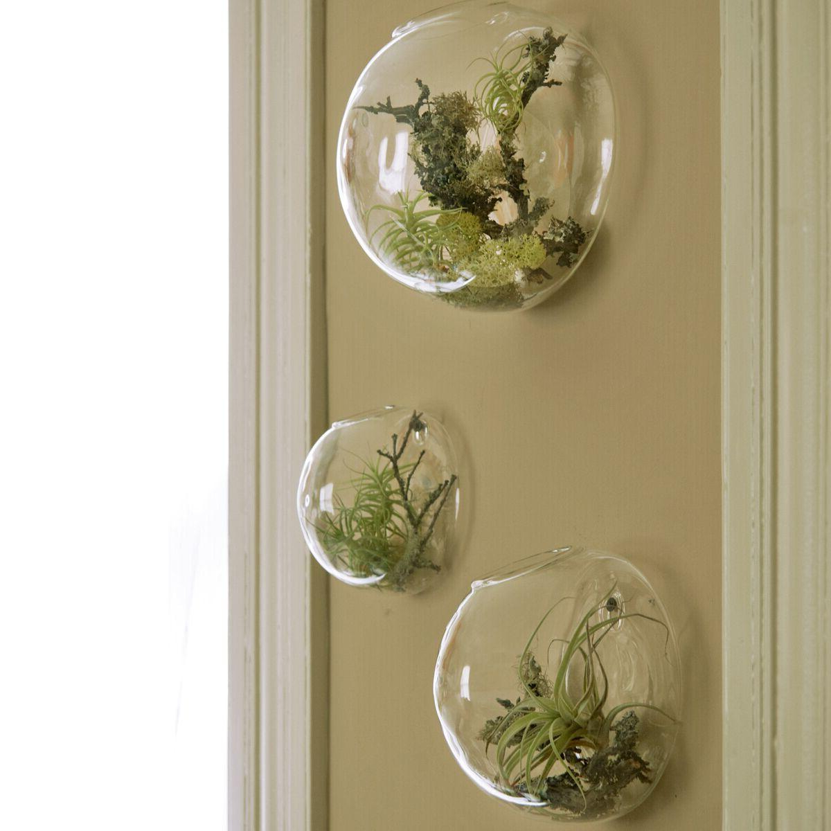 Most Recently Released Vase And Bowl Wall Decor With Regard To Wall Bubble Terrariums Glass Wall Vase For Flowers/indoor Plants (Gallery 1 of 20)