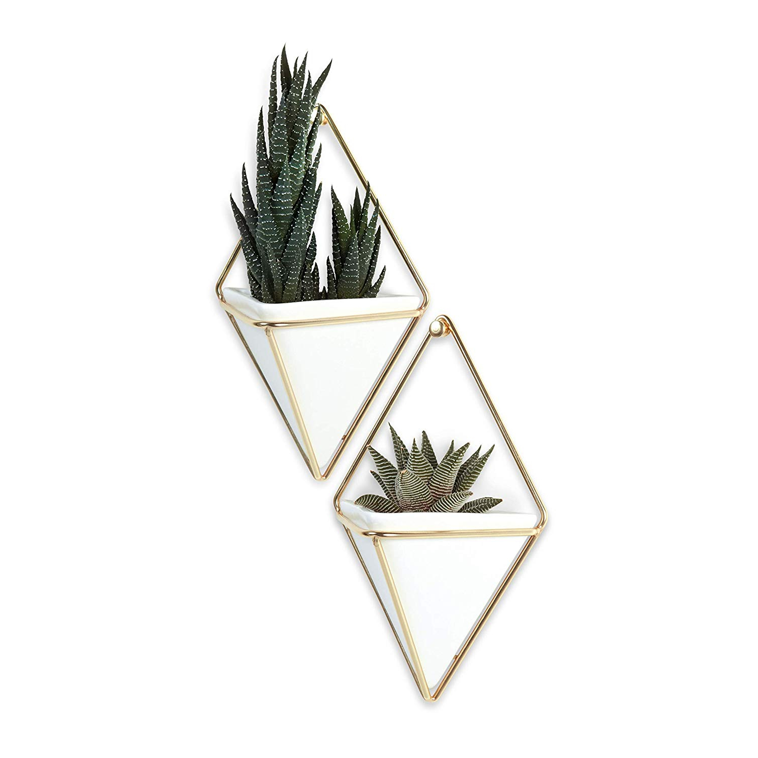 Recent Trigg Ceramic Planter Wall Decor Intended For Amazon: Umbra Trigg Hanging Planter Vase & Geometric Wall Decor (View 8 of 20)