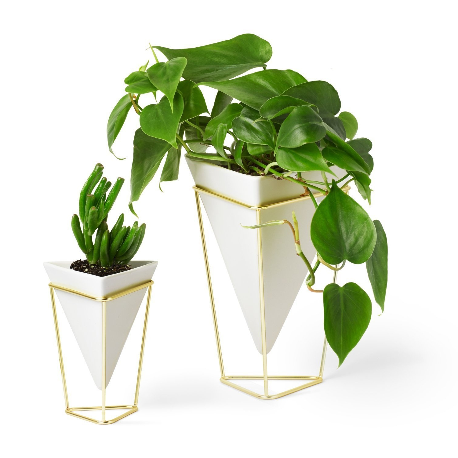 Umbra Trigg Desktop Planter Vase & Geometric Container – Great For For Trendy Trigg Ceramic Planter Wall Decor (View 16 of 20)
