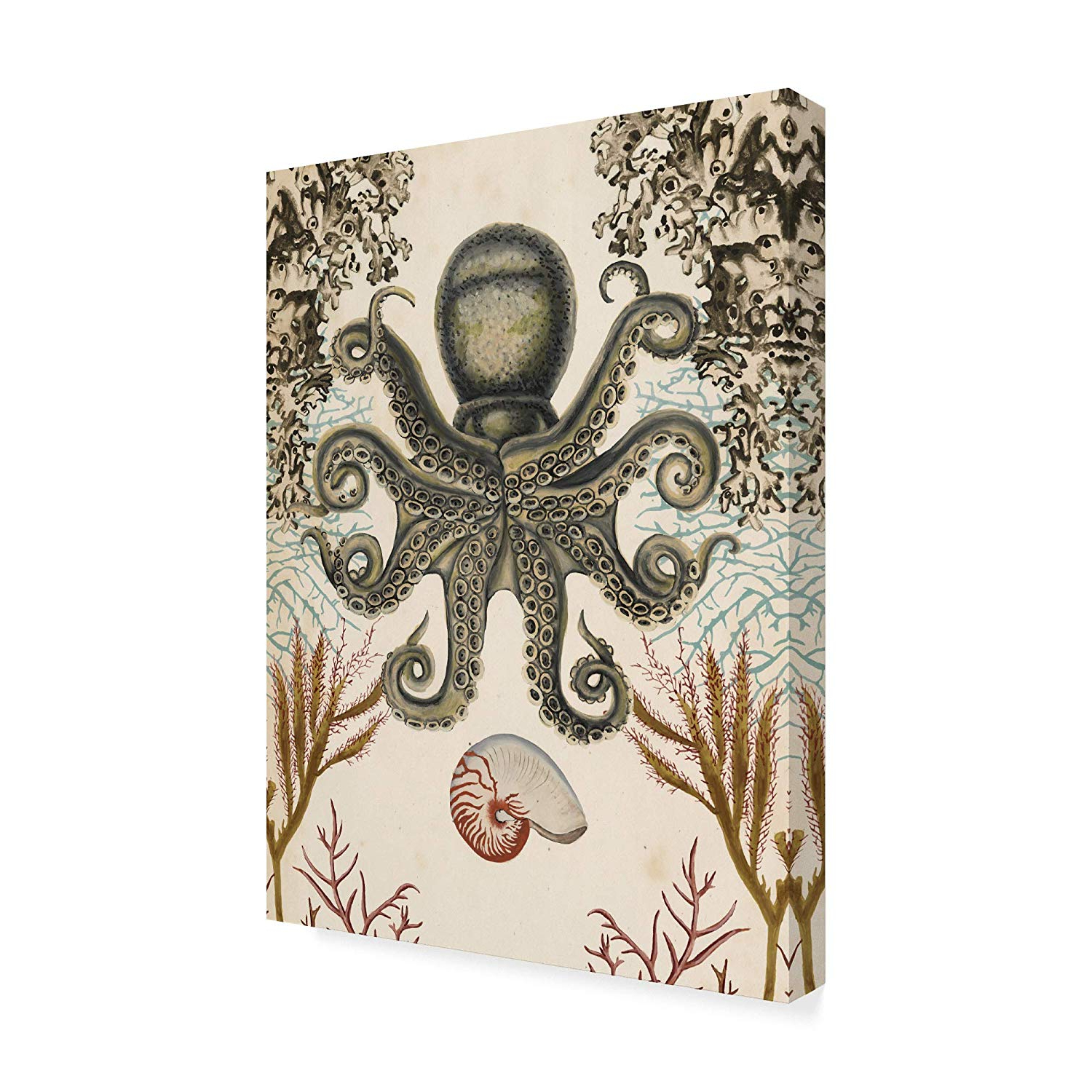 Wall Decor By World Menagerie Intended For Well Known Amazon: Trademark Fine Art Antiquarian Menagerie Octopus (View 11 of 20)
