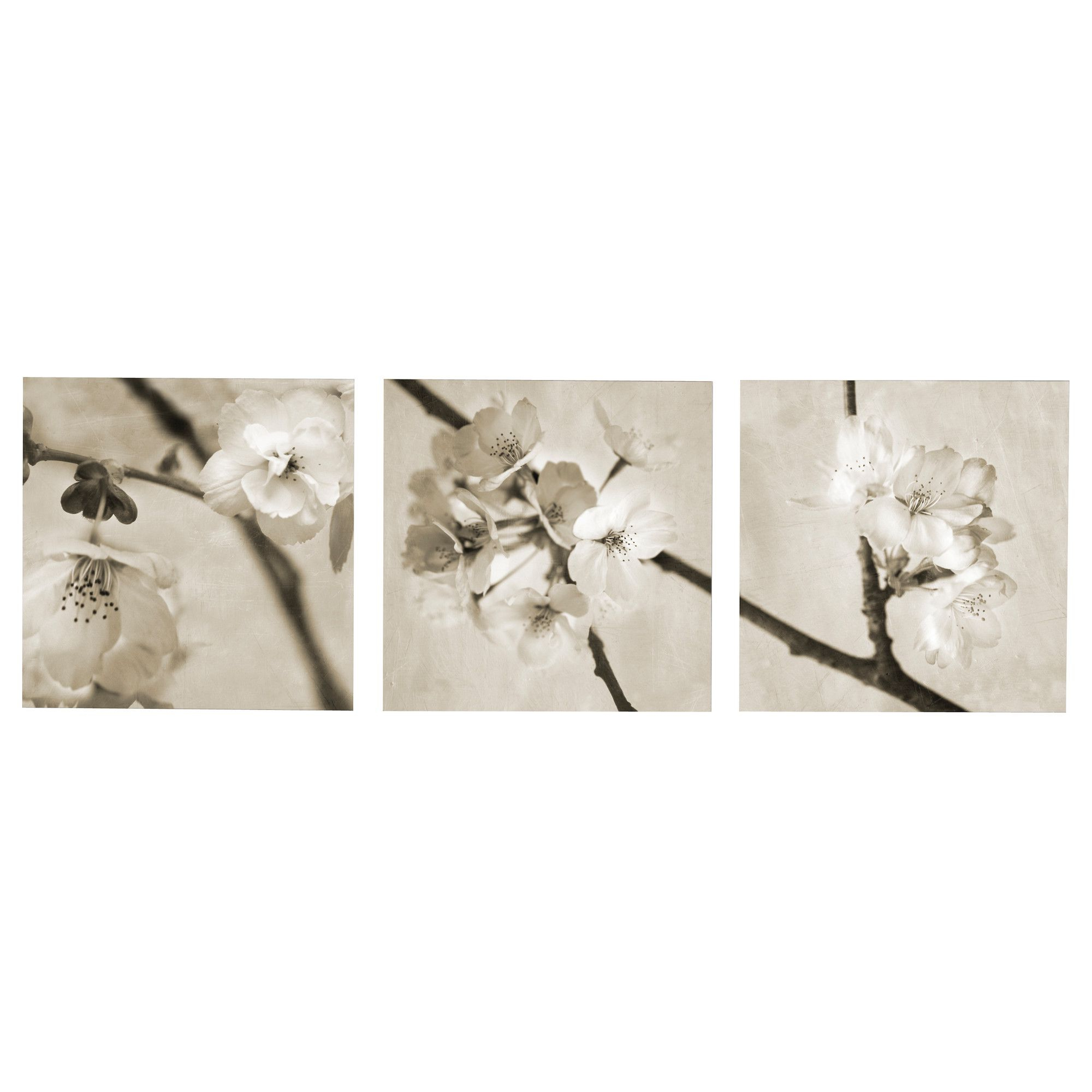 Widely Used 3 Piece Ceramic Flowers Wall Decor Sets Inside Pjätteryd Picture, Set Of 3 – Ikea (View 17 of 20)