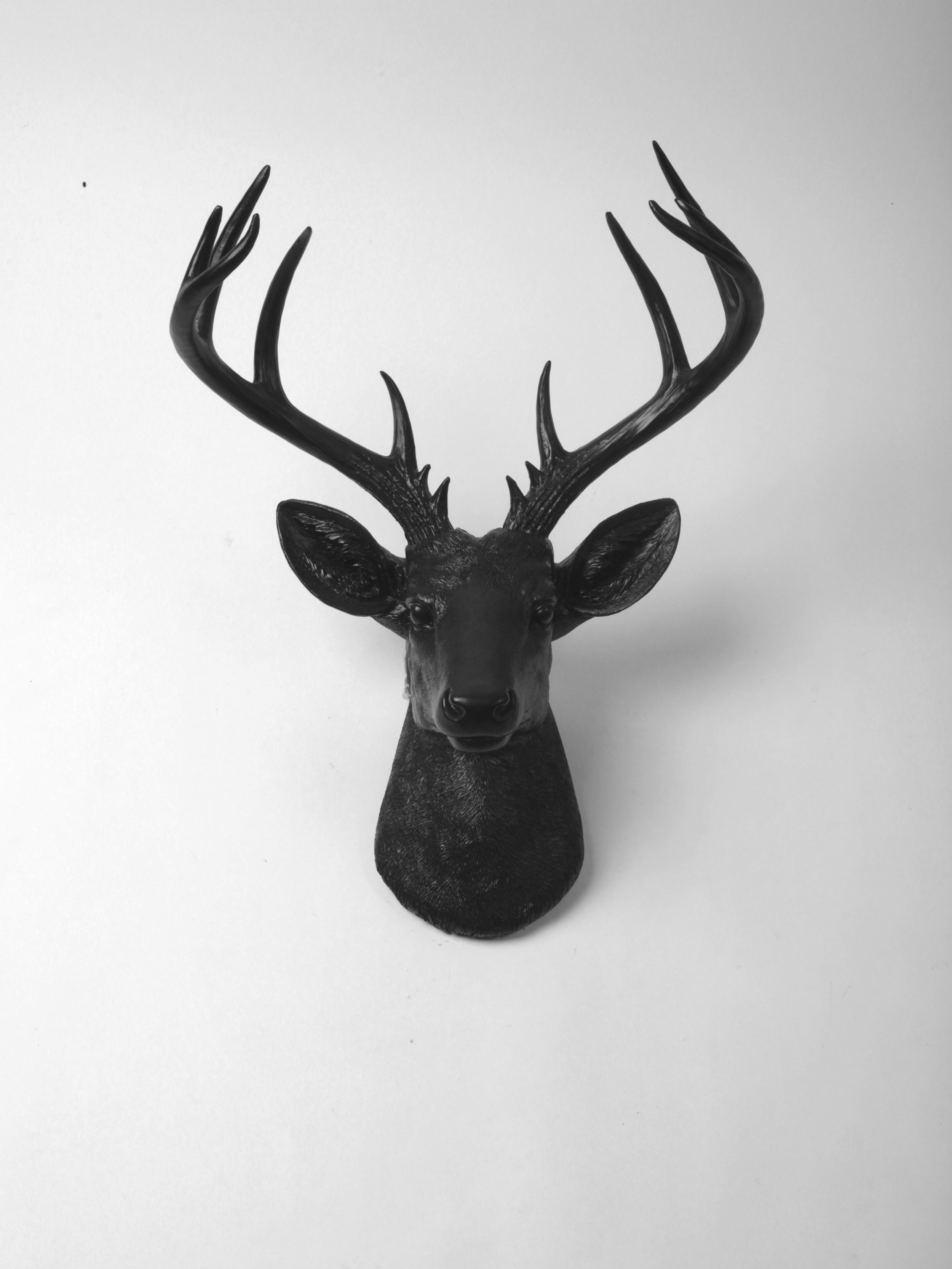 2020 Large Deer Head Faux Taxidermy Wall Decor Within The Xl Ignatius, Stag Deer Head Wall Mount, Black Resin In 2019 (Gallery 8 of 20)