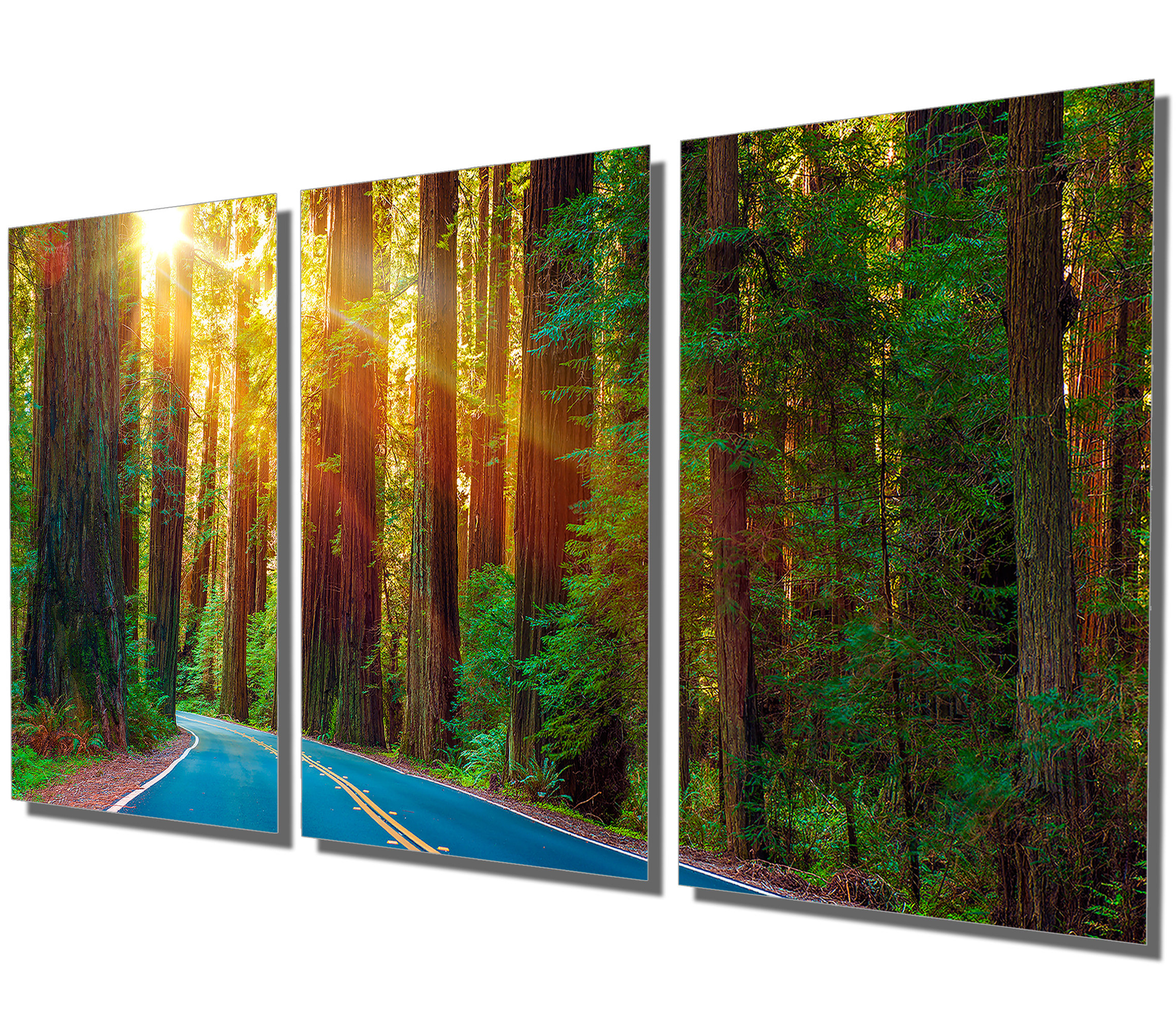Best And Newest Nature Metal Sun Wall Decor With Metal Print Redwood Forest Highway 3 Panel Split (View 19 of 20)