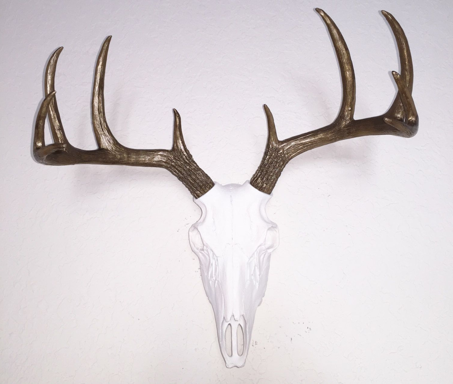 Deer Skulls, Faux Taxidermy Within 2020 Atlantis Faux Taxidermy Wall Decor (View 5 of 20)