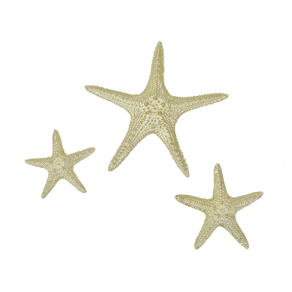 Fashionable Fetco Yelton Platinum Starfish Set X67600b – The Home Depot Regarding Yelton 3 Piece Starfish Wall Decor Sets (View 4 of 20)