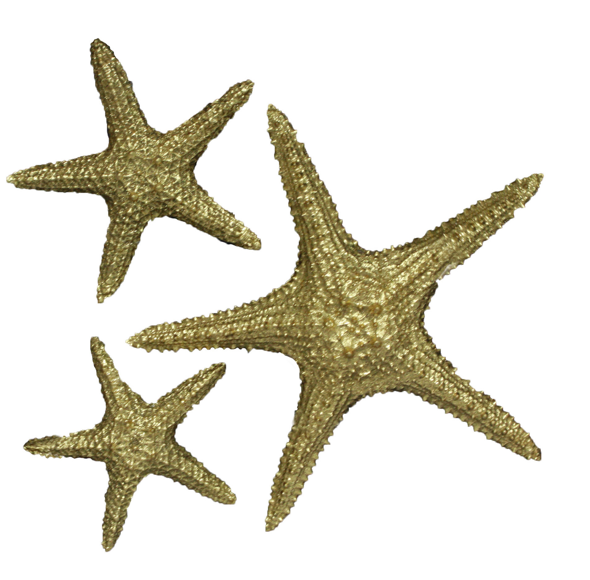 Fetco Home Decor Yelton 3 Piece Starfish Wall Décor Set (View 5 of 20)