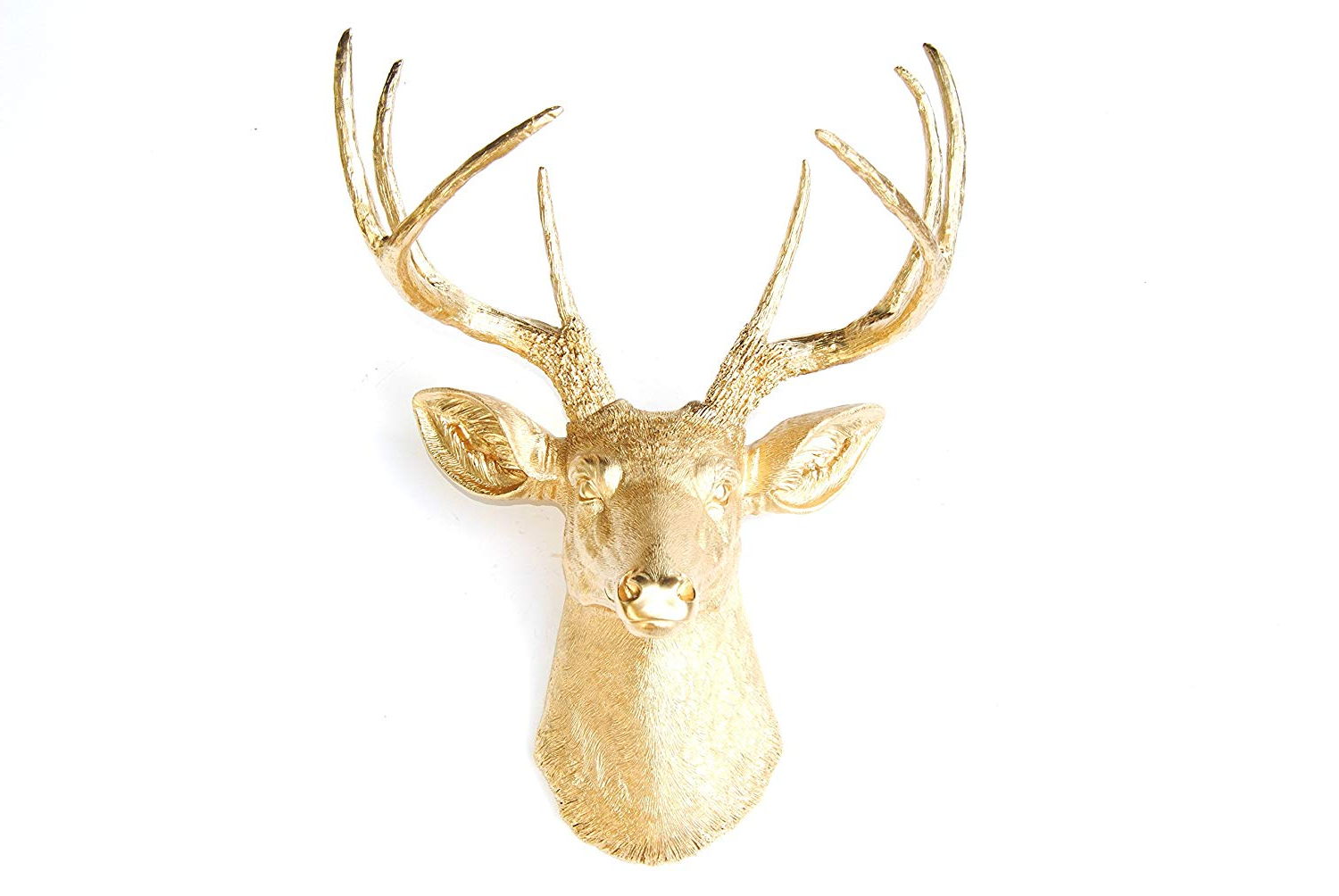Most Recently Released Amazon: Near And Deer D0808 Faux Taxidermy 8 Point Deer Head Inside Atlantis Faux Taxidermy Wall Decor (View 19 of 20)