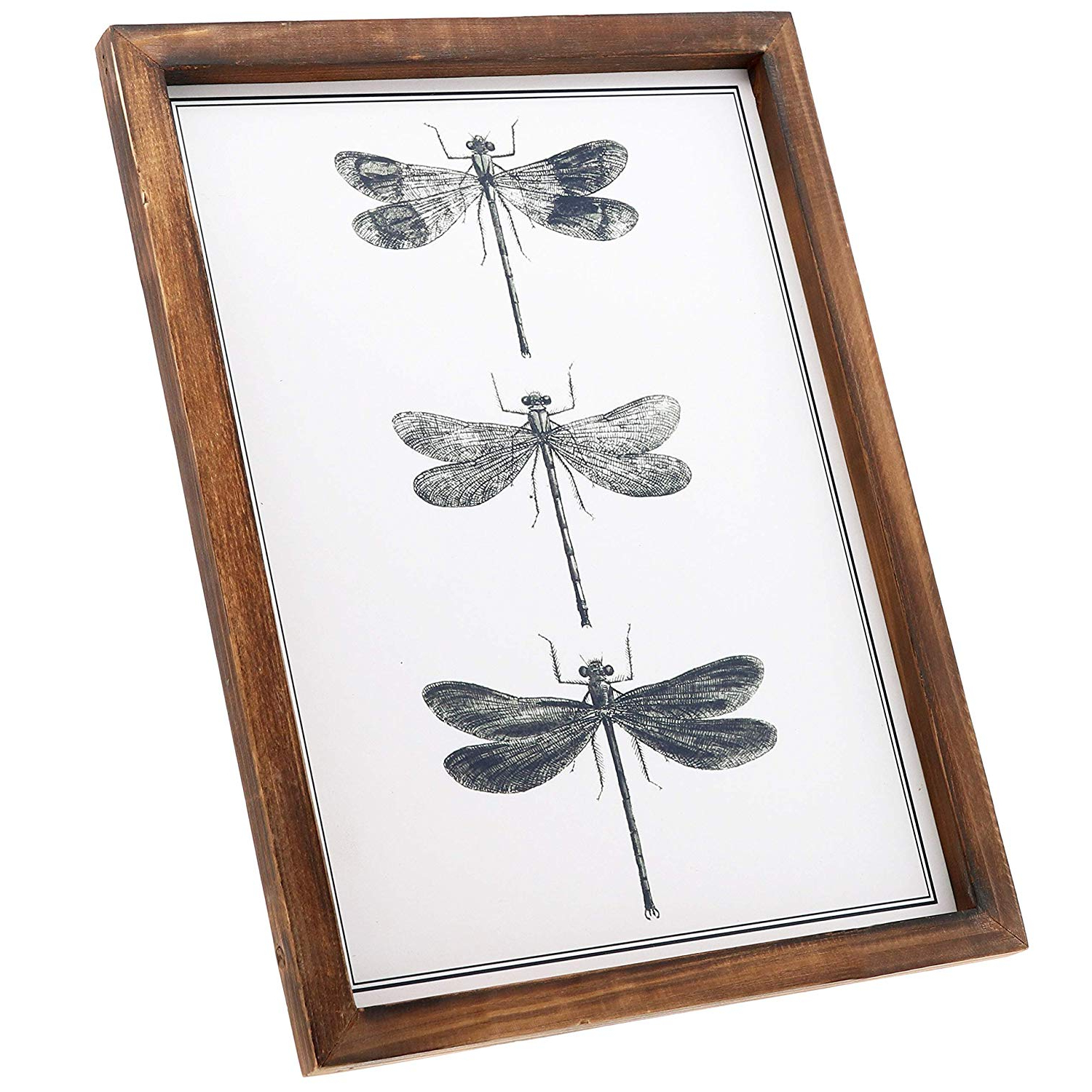 Preferred Dragonfly Wall Decor In Amazon: Barnyard Designs Dragonfly Wall Decor Wood Plaque Rustic (View 13 of 20)