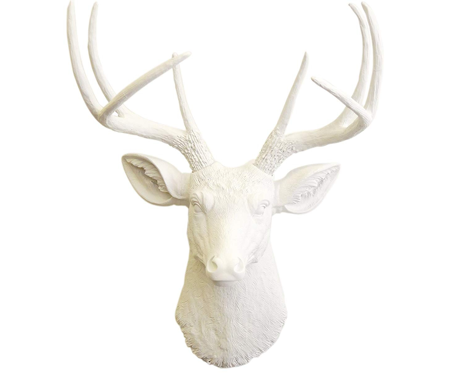 Recent Amazon: Near And Deer D0101 Faux Taxidermy 8 Point Deer Head With Regard To Atlantis Faux Taxidermy Wall Decor (View 9 of 20)