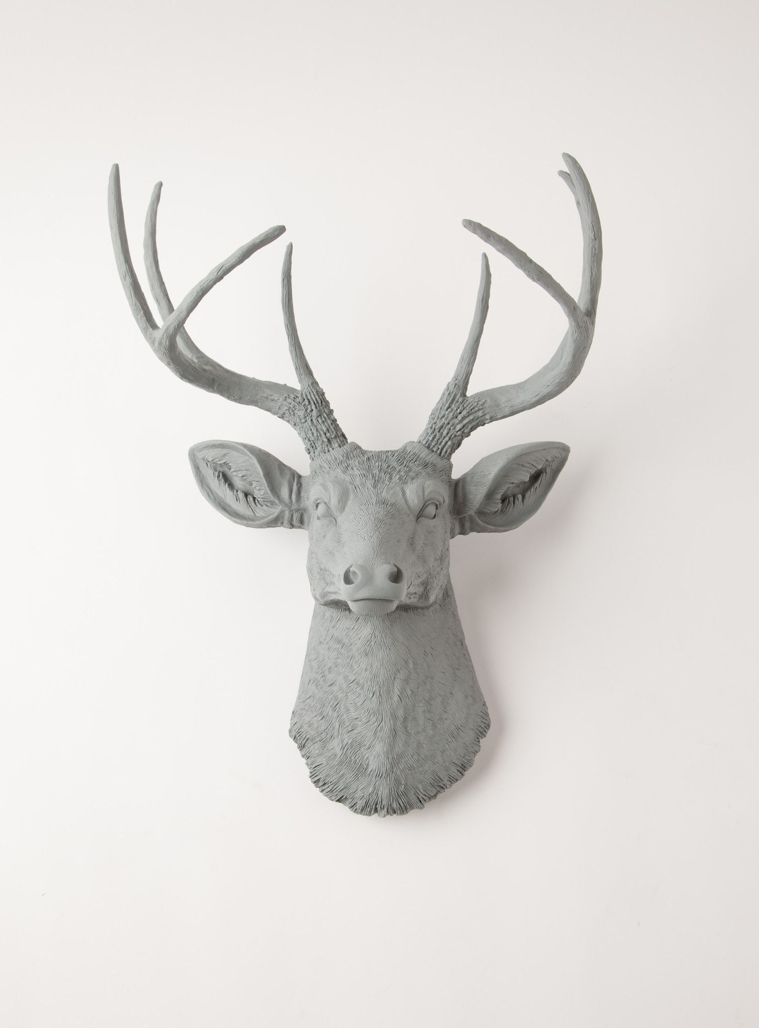 Stag Deer Head (View 11 of 20)