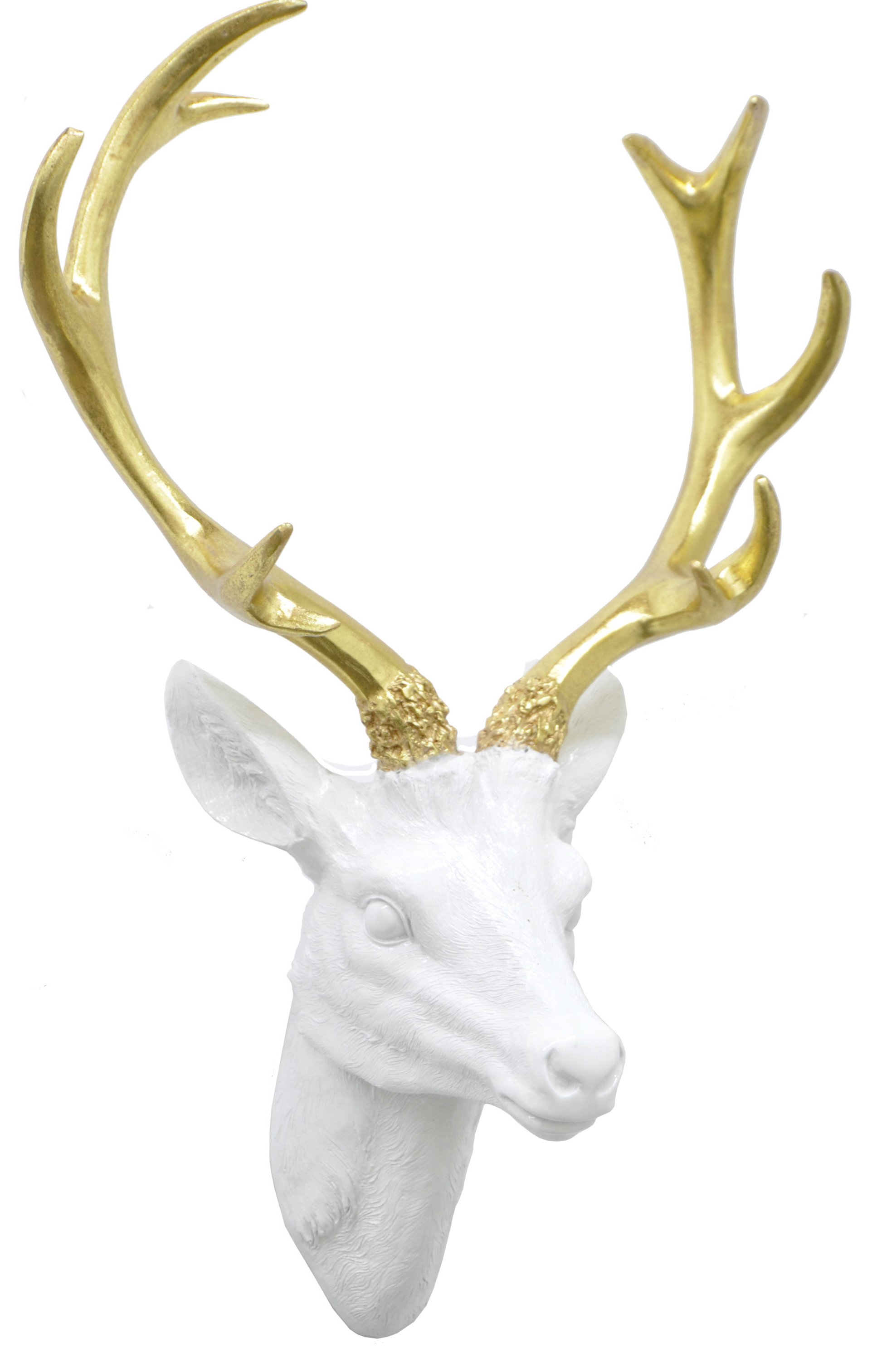 Well Known Three Hands Co. Resin Deer Head Wall Décor & Reviews (Gallery 10 of 20)