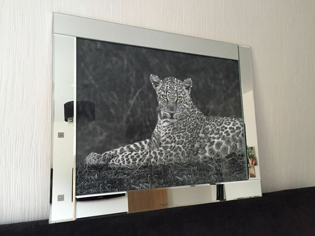 Best And Newest Leopard Wall Mirror – Mirror Ideas Inside Leopard Wall Mirrors (View 3 of 20)