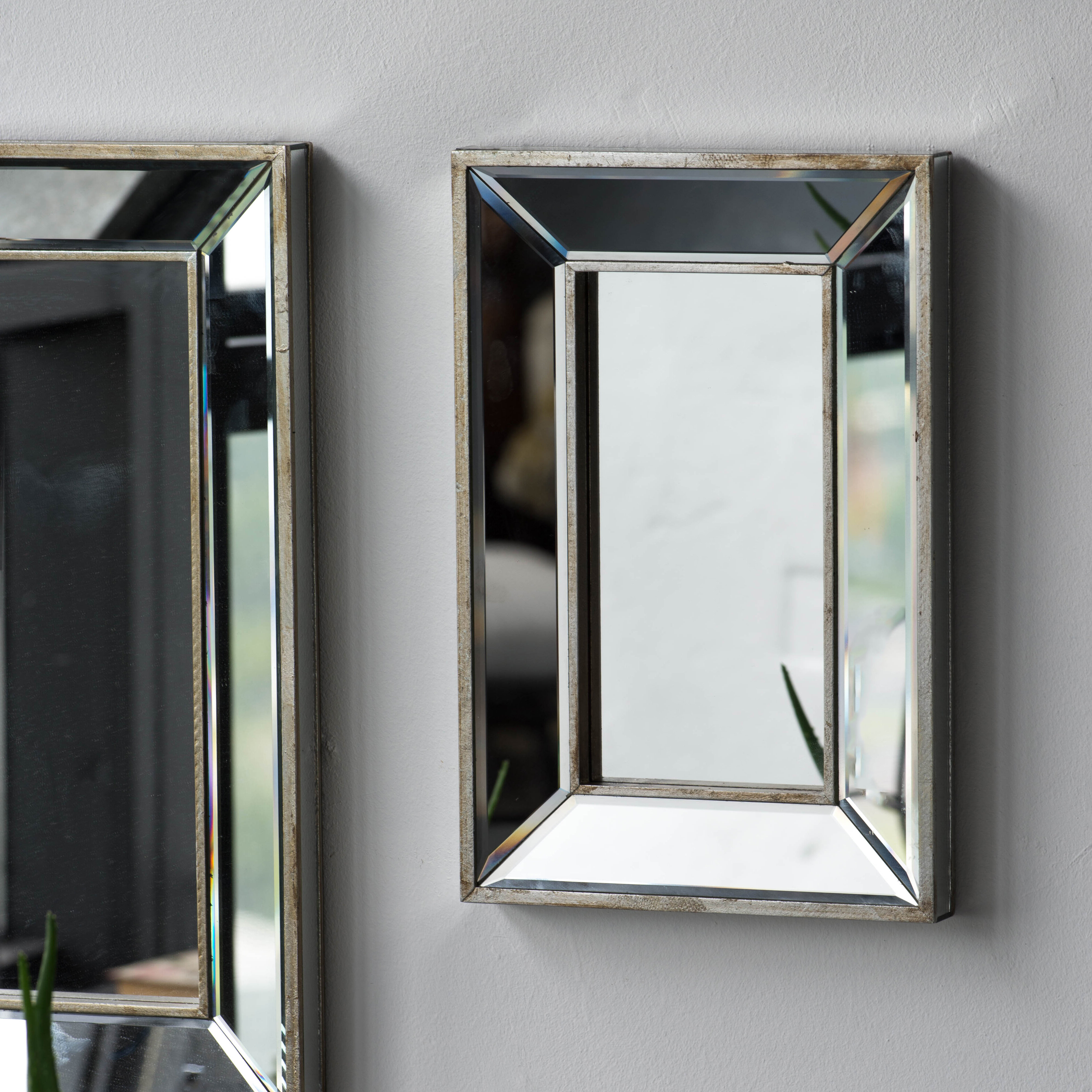 Best And Newest Rectangle Accent Wall Mirrors Inside Kapp Rectangle Accent Wall Mirror (View 13 of 20)