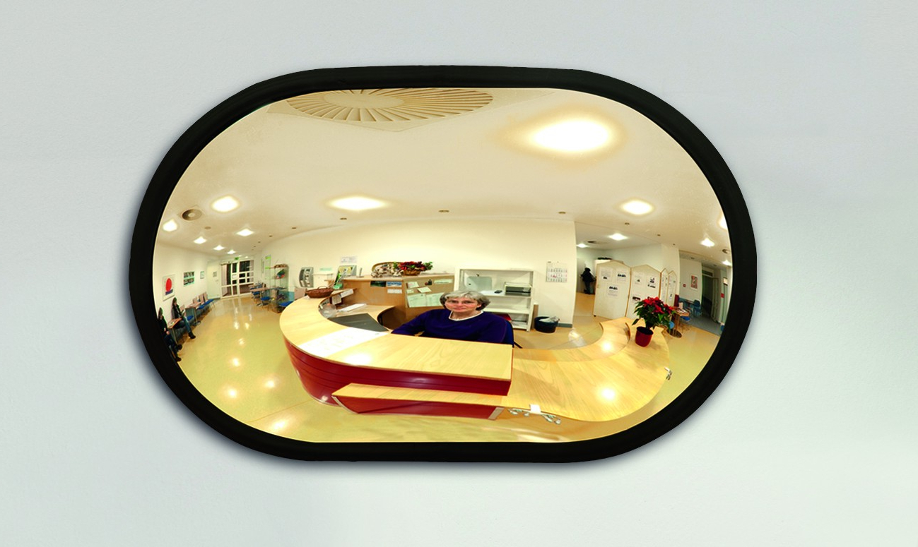 Detective Internal Convex Wall Mirror Within Newest Convex Wall Mirrors (View 14 of 20)