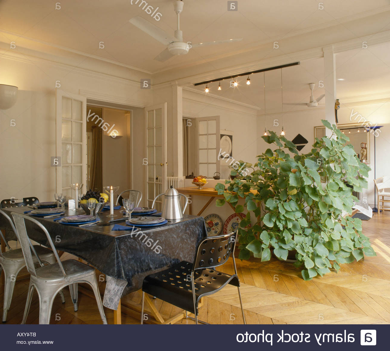 Large Plastic Wall Mirrors Throughout Well Liked Tall Houseplant Beside Large Wall Mirror In Apartment Dining (Gallery 20 of 20)