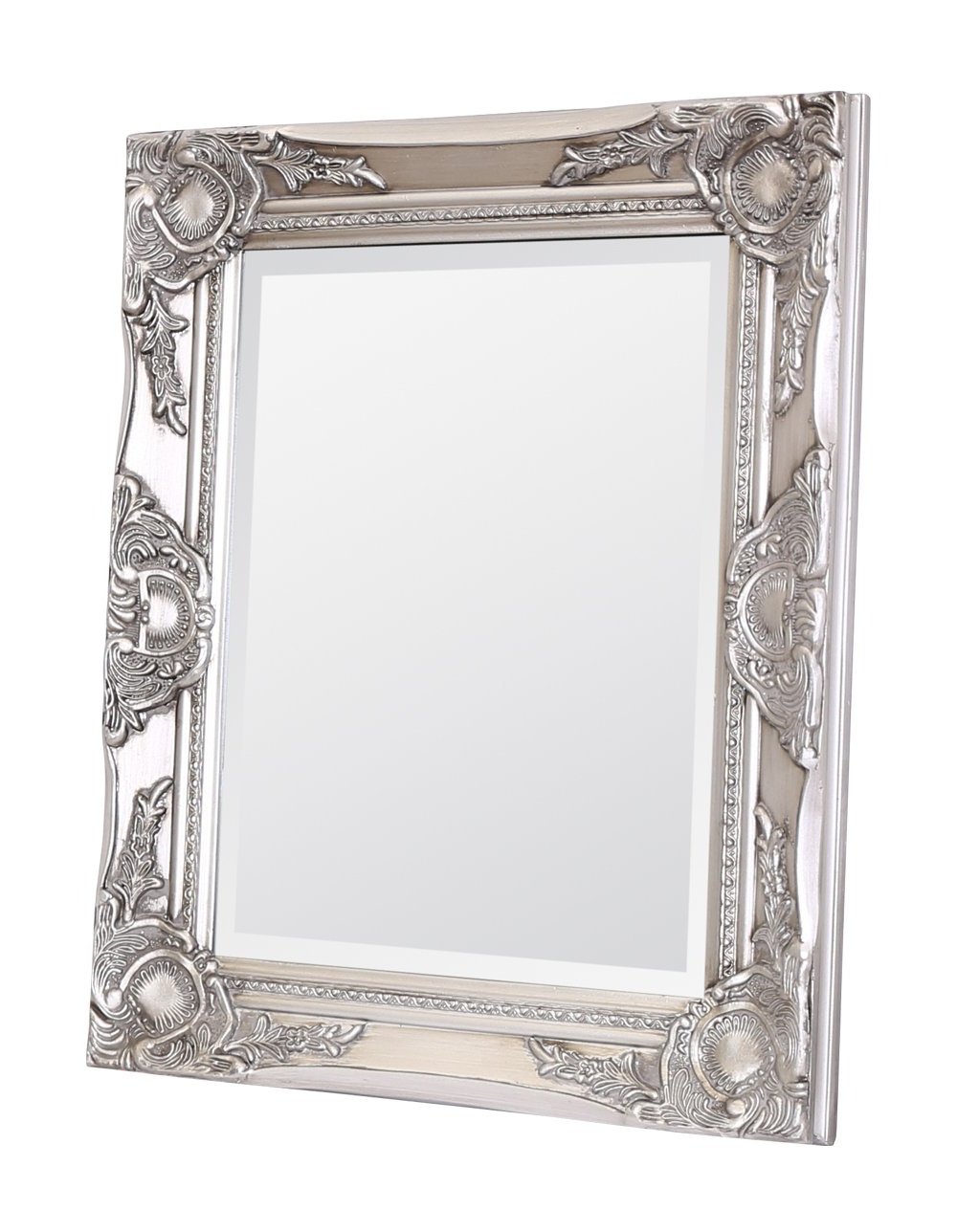 Most Popular Rectangle Wall Mirrors Inside Select Mirrors Haywood Rectangle Wall Mirror (42cm X 52cm, Antique Silver) (View 15 of 20)