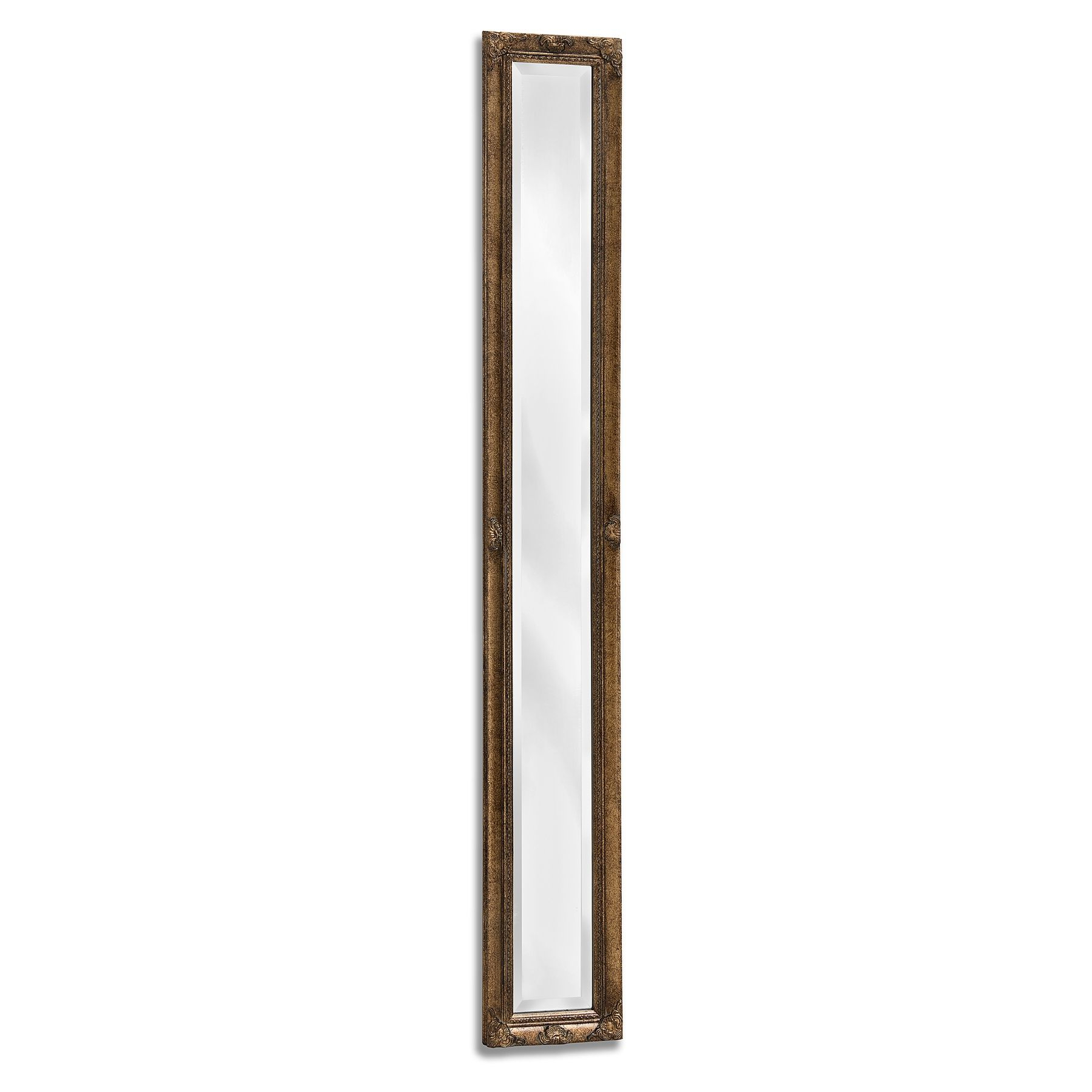 Narrow Wall Mirrors For Well Liked Antique Gold Narrow Wall Mirror (View 3 of 20)