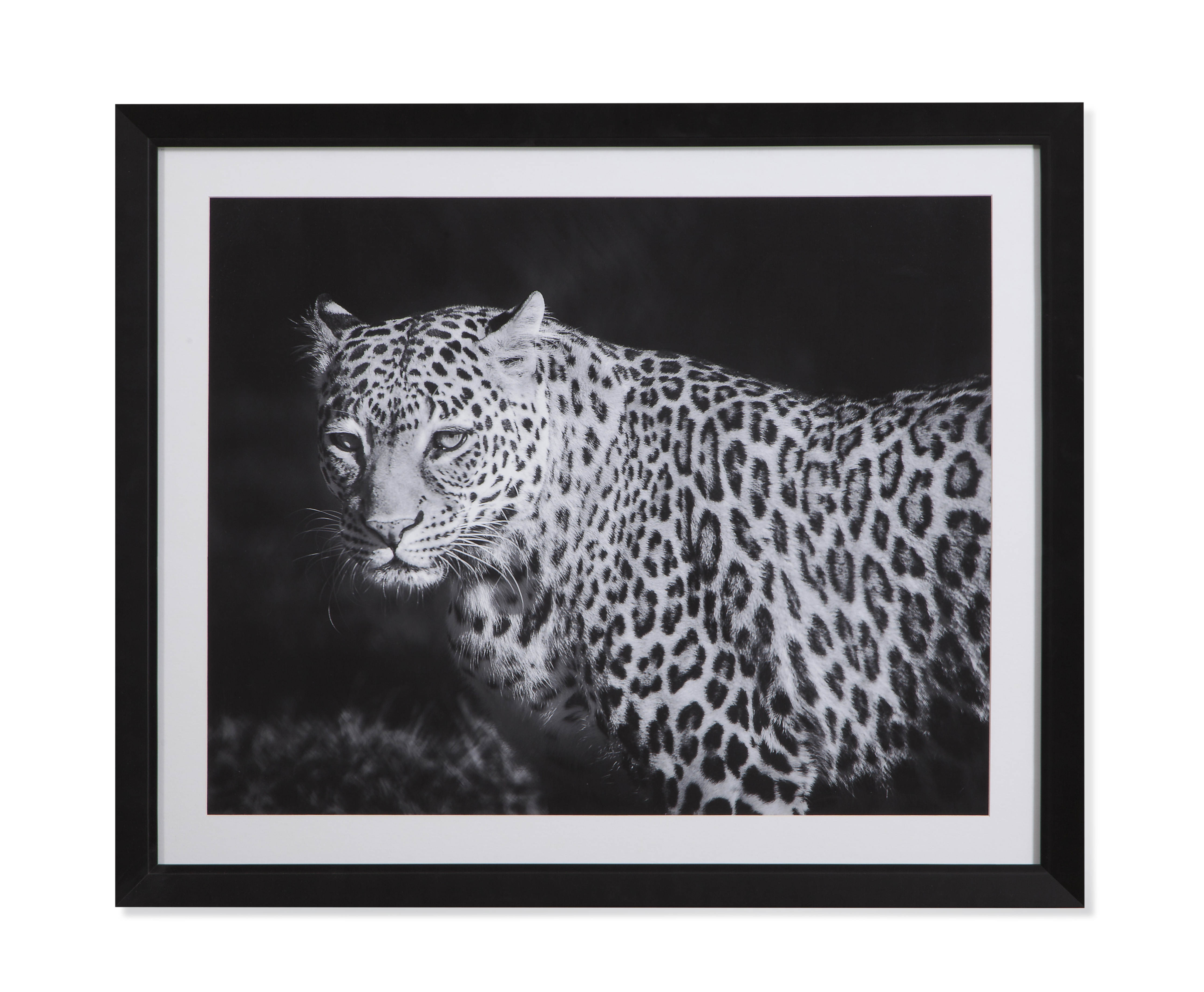 Well Known Leopard Wall Mirrors With Bassett Mirror Cream Black Leopards Gaze Wall Art (View 18 of 20)
