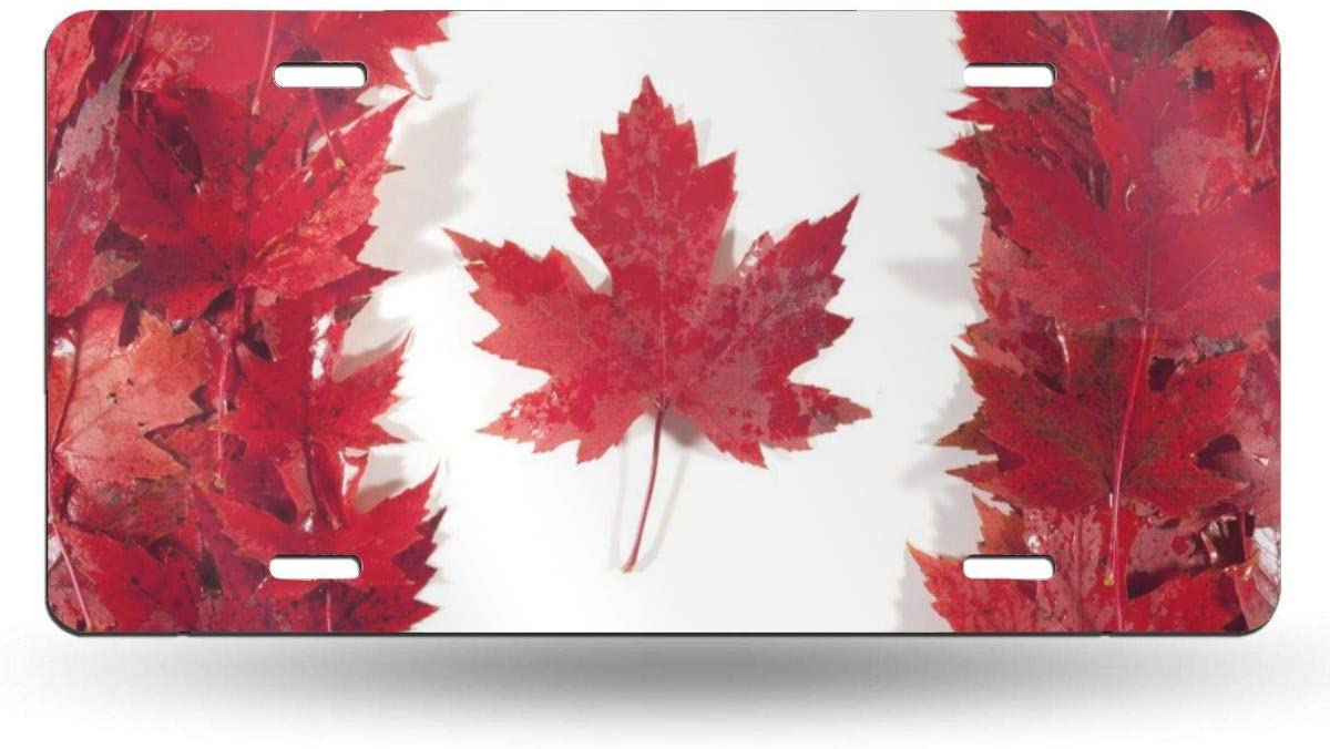 2020 Anwei Canada Flag Maple Leaf License Plate Car Auto Tag Aluminum Personalized Metal Sign For Car Decoration White Pertaining To Aluminum Maple Leaf Wall Decor (View 9 of 20)