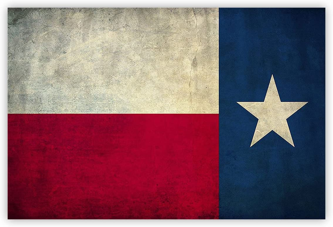 2020 Coastal Flag Sign With Rope Wall Décor Regarding Amazon: Vintage Retro Texas Flag Oil Painting On Canvas (View 20 of 20)