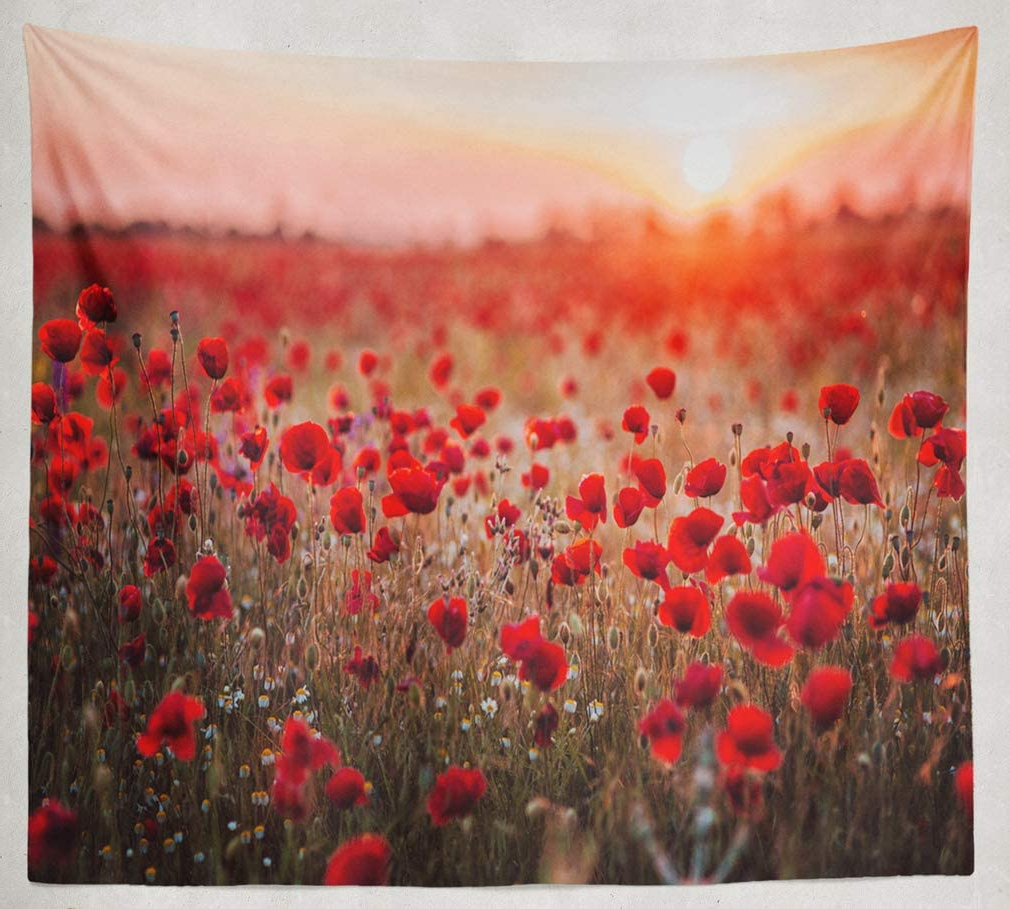 Asoco Tapestry Wall Handing Beautiful Field Red Poppies Sunset Light Russia Poppy Field Red Russia Wall Tapestry For Bedroom Living Room Tablecloth Within Popular Blended Fabric Poppy Red Wall Hangings (View 7 of 20)