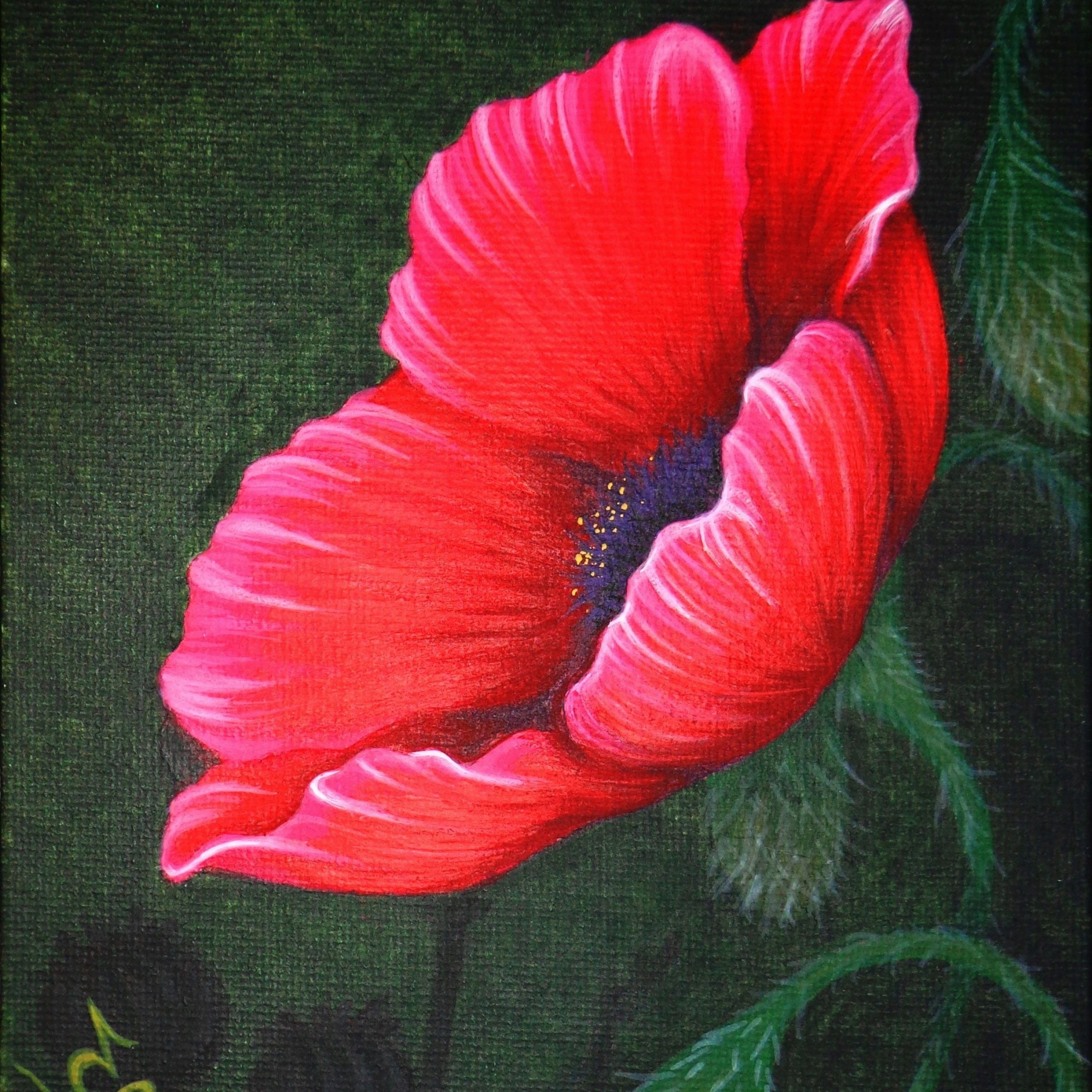 """Blended Fabric Poppy Red Wall Hangings With Regard To Preferred Pensive Poppy""""natalie Vonraven For Remembrance Day (View 19 of 20)"""