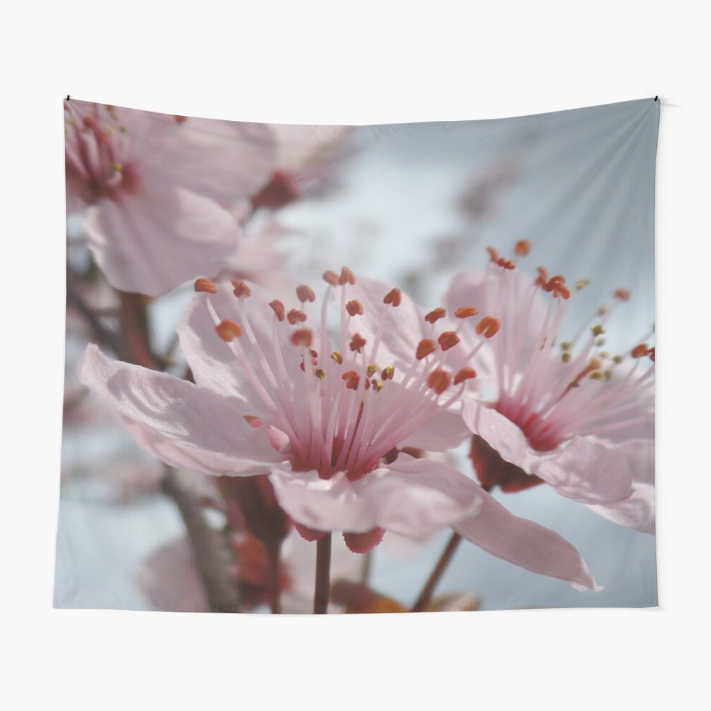 """Blended Fabric Spring Blossom Tapestries In 2020 Finally Spring! ~ Pink Cherry Blossom"""" Tapestry (View 13 of 20)"""