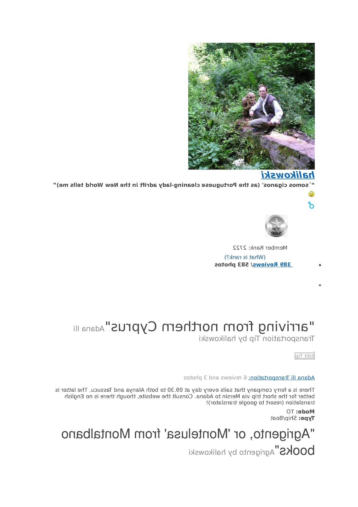 Calaméo – Halikowski Virtualtourist Regarding Most Popular European Le Point Deau Flamant Rose Tapestries (View 14 of 20)