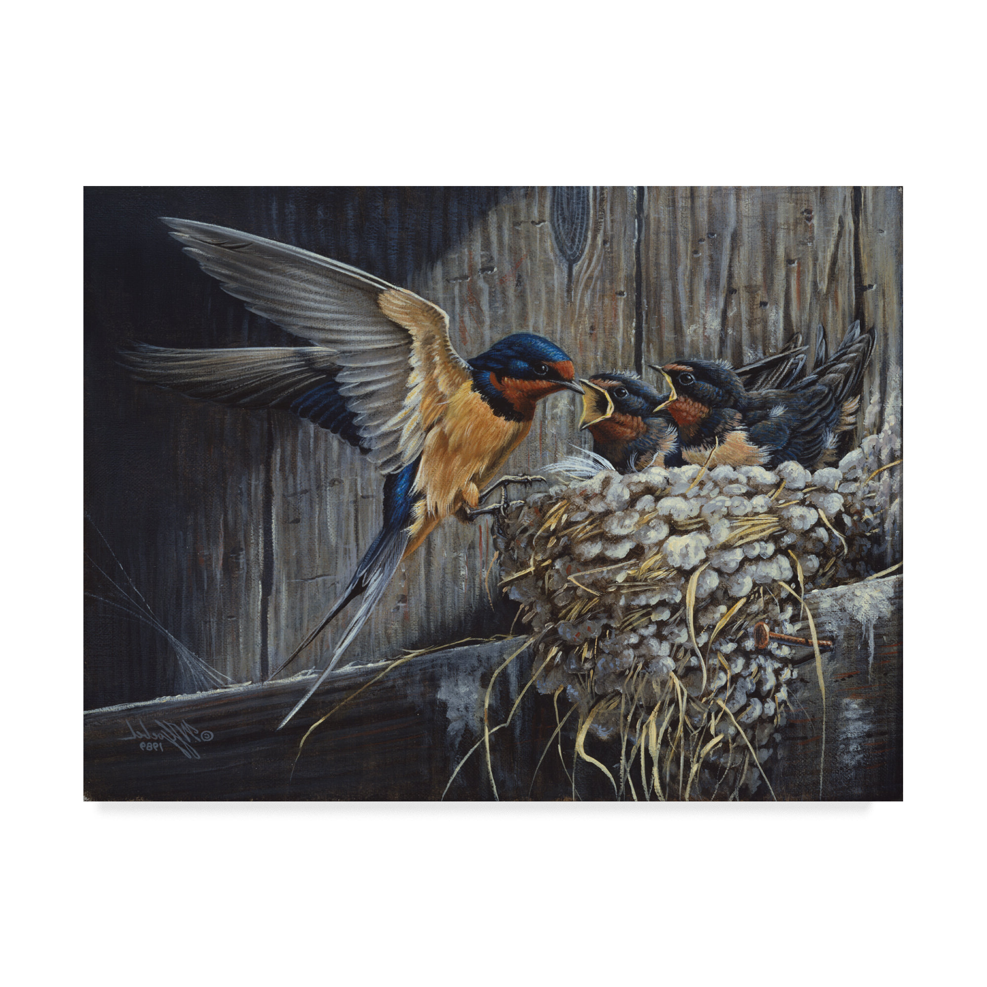 Fashionable 'country Barn Swallows' Graphic Art Print On Wrapped Canvas Pertaining To Swallows Wall Decor (set Of 6) By Highland Dunes (View 2 of 20)