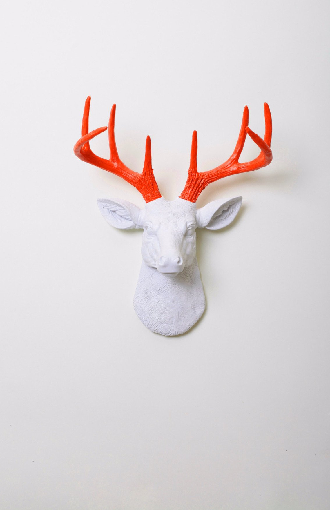 Faux Taxidermy (View 19 of 20)