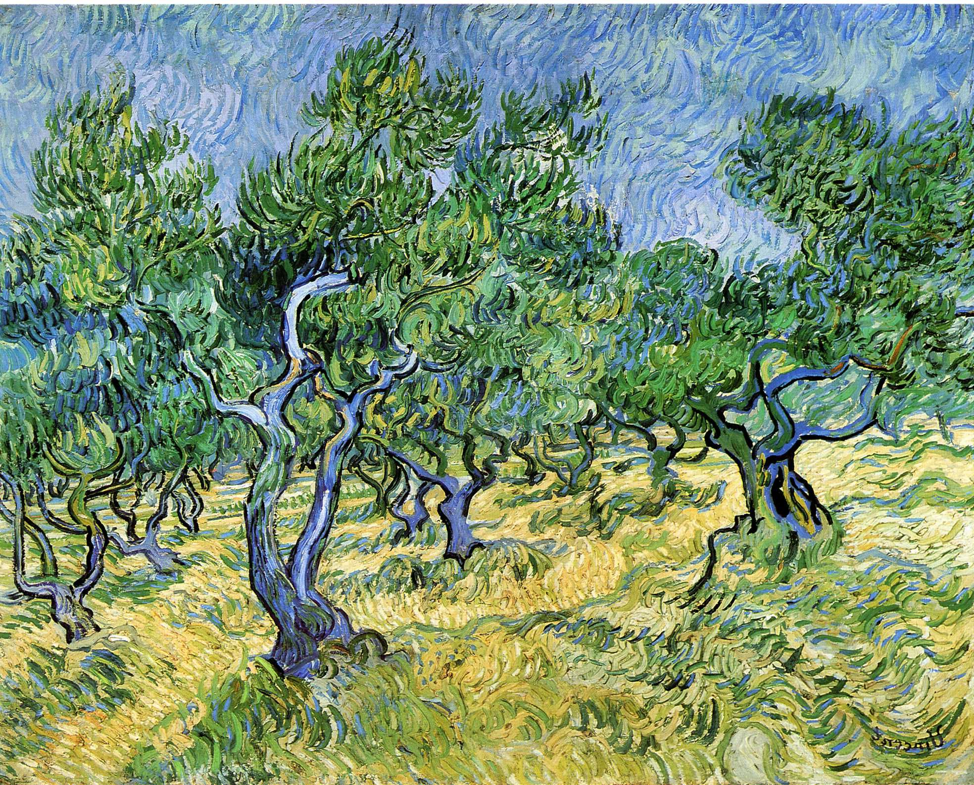 Favorite Olive Grove – Vincent Van Gogh – 1889 – Place Of Creation Pertaining To Blended Fabric Van Gogh Terrace Wall Hangings (View 17 of 20)