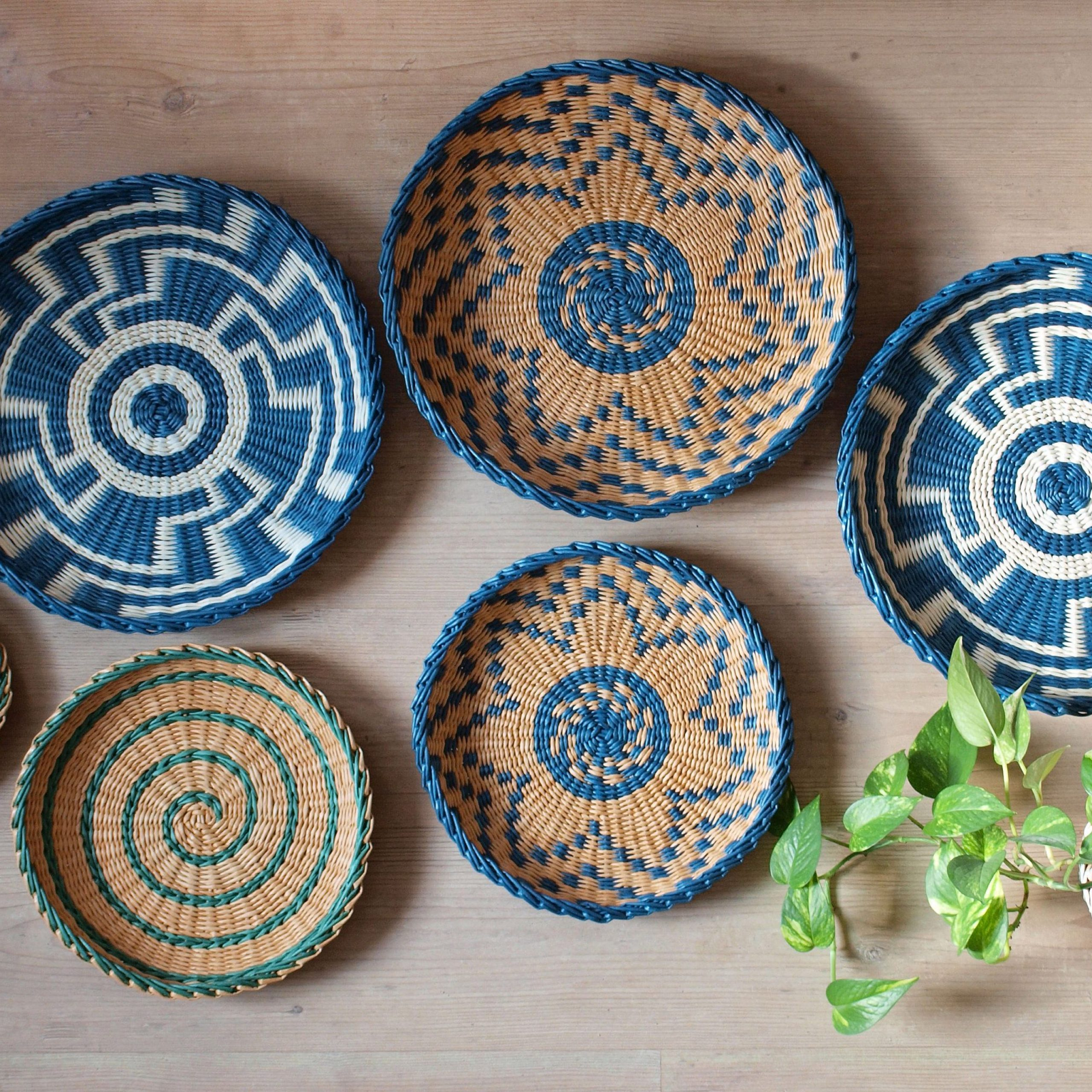 Floral Plate Wall Décor By World Menagerie Intended For Latest Set Of 6 Wall Art Baskets African Inspired Blue Green Woven (View 19 of 20)