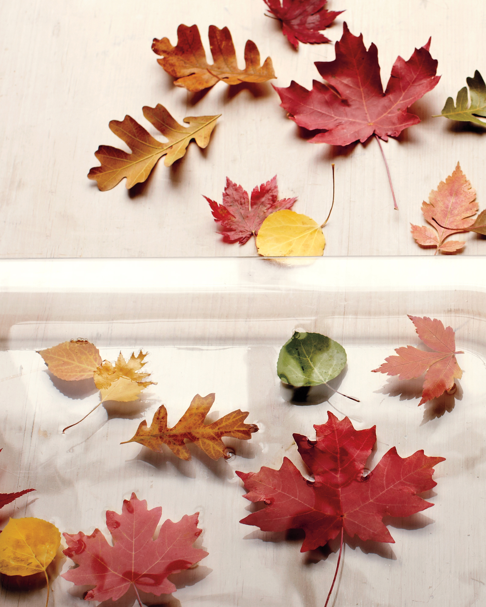 Popular 12 Leaf Crafts That Celebrate All The Colors Of Fall With Blended Fabric Leaves Wall Hangings (View 20 of 20)