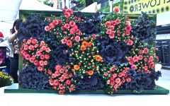 Floral Plant Wall Art